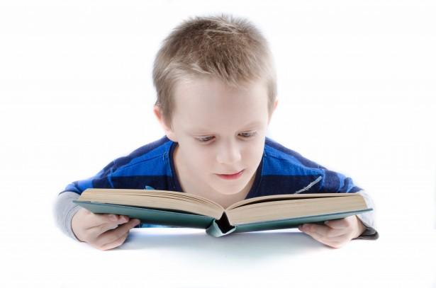 Los 5 mejores libros infantiles del 2016